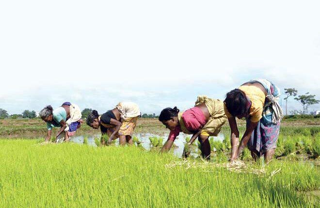 teluguism-Farmers